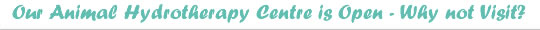 Animal Hydrotherapy Stockport Cheshire